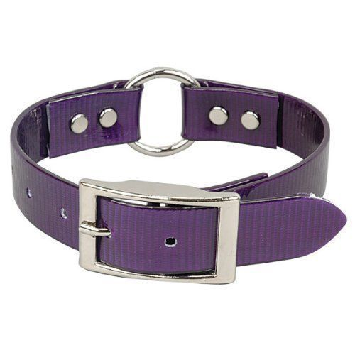 "OmniPet Sunglo Ring in Center Dog Collar, 1 x18"", Purple"
