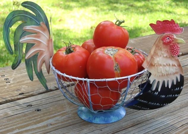 Country Farm Metal Rooster Chicken Vegetable Fruit Wire Basket Kitchen Storage