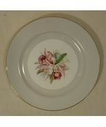 Noritake Margarita 5049 Vintage 10in Dinner Plate China Gold Rim - $18.45