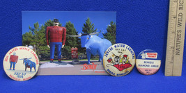 Vintage JC Annual Water Carnival Button Pins 1964 1971 1974 Paul Bunyan ... - $6.92