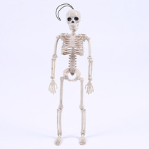 Halloween Skeleton Bride and Groom Plastic Lifelike Human Bones - $15.90
