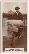 Pig In A Basket Being Ridden On A Bike 1930s Trade Ad Card - $8.99