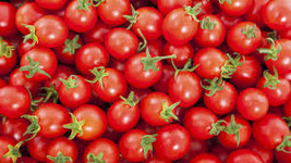 CHERRY TOMATO SEEDS 10 fresh vegetable seeds ready to plant in your hard - $1.99