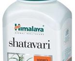 Shatavari thumb155 crop