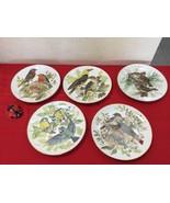LOT of 5 WWF BIRD PLATE ROBINS GOLD RIM STUNNING  ROBINS BY URSULA BAND - $55.00