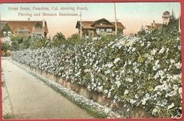 PASADENA CALIFORNIA Busch Fleming Blossom Homes CA - $10.00