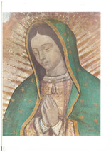 "Our Lady of Guadalupe Picture - 9.5""x 11.5"" - ""Bust"" Image"