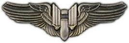 Air Force Army Gunner Wing Big 2 1/2 Pewter Pin - $11.72