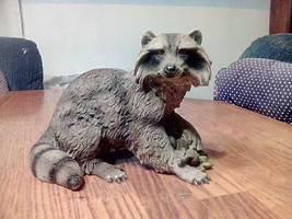10-in poly resin lifelike raccoon. - $10.00