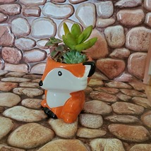 Mini Fox Planter with Succulent Arrangement, Succulent Gift, Animal Planter Pot image 9