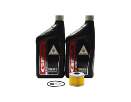 2006-2009 Honda Sportrax 300 TRX300EX EX 2x4 OEM Oil Change Kit H44 - $34.99