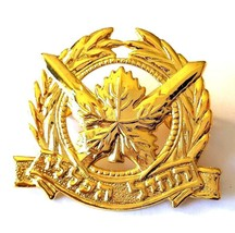 IDF Israel Army Pin Badge Official General Corps Beret Emblem Insignia Gilded - $6.71