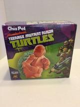 NEW Nickelodeon Teenage Mutant Ninja Turtles Chia Pet Planter TMNT Decoration - $14.01