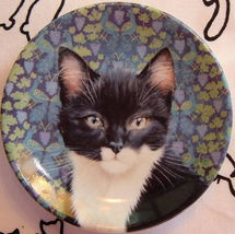 Lesley A Ivory Cats Posky &Peacock Vine Mini Plate Xlt! - $23.00