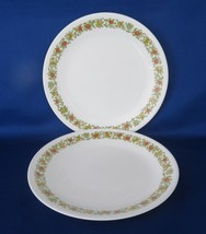 "Corelle ""Spice of Life"", 8 1/2"" Luncheon Plates - $12.00"