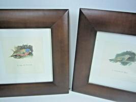 Vintage Isabelle De Borchgrave for Target Set of 2 Bird prints in Walnut... - $88.83