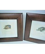Vintage Isabelle De Borchgrave for Target Set of 2 Bird prints in Walnut... - $75.51