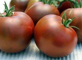 2000 Seeds of Nyagous - Tomatoes Black - $118.70