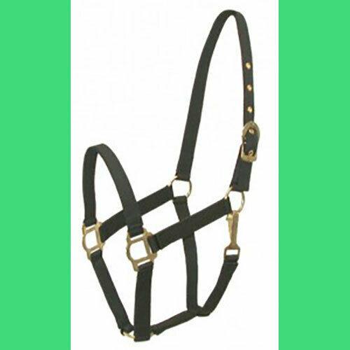 COB Arab Nylon Halter Classic NEW!  Black