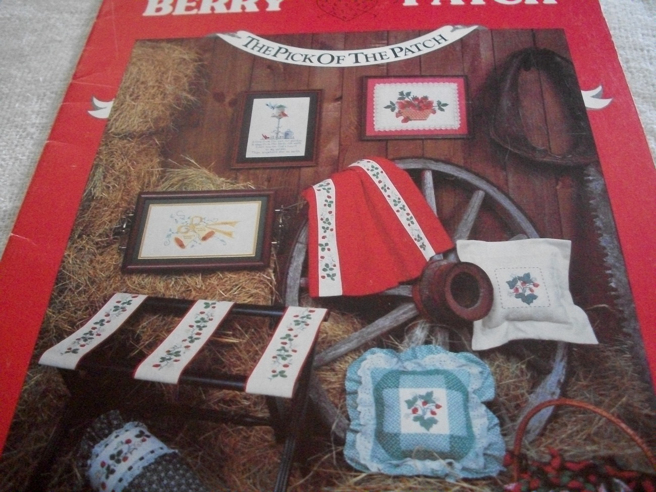 Primary image for Berries Counted Cross Stitch Designs