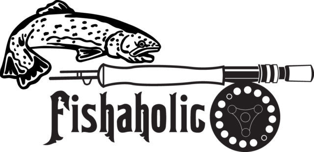 FISH DECAL #FH1/146 FISHAHOLIC BASS TROUT FLY BAIT LINE CAR TRUCK AUTO SUV VAN