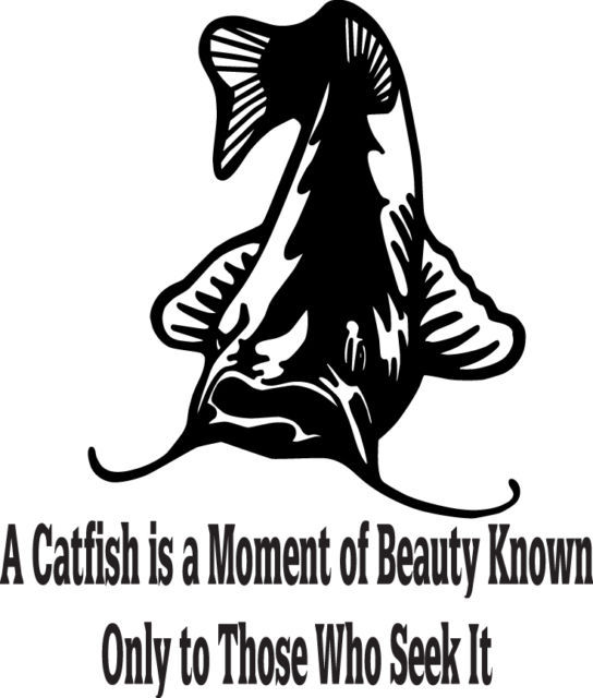 FISH DECAL #FH1/222  CATFISH MOMENT OF BEUATY THOSE SEEK IT ROD REEL CAR TRUCK