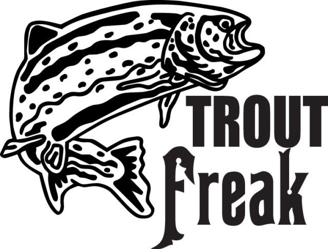 FISH DECAL #FH2/154 TROUT FREAK CATCH LURE BAIT LINE WORM FLY CAR TRUCK AUTO SUV