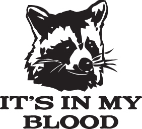 HUNT DECAL #HT1/198 IT'S IN MY BLOOD RACOON FURRY BLACK EYES GUN CAR TRUCK AUTO