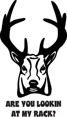 HUNT DECAL #HT1/227 ARE YOU LOOKIN AT RACK DEER HORNS ANTLERS CAR TRUCK AUTO SUV