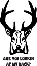 HUNT DECAL #HT1/227 ARE YOU LOOKIN AT RACK DEER HORNS ANTLERS CAR TRUCK ... - $15.00