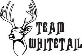 Hunt Decal #Ht1/235 Antlers Horns Team Whitetail Deer Rifle Bow Car Truck Auto  - $15.00