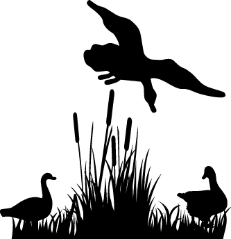 HUNT DECAL #HT5/252 GEESE FLY WINGS GUN AMMO SHOOT FEATHERS CAR TRUCK AUTO SUV