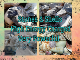 8 Powerful Sea Gems, High Energy Charged Shells & Stones - $20.00