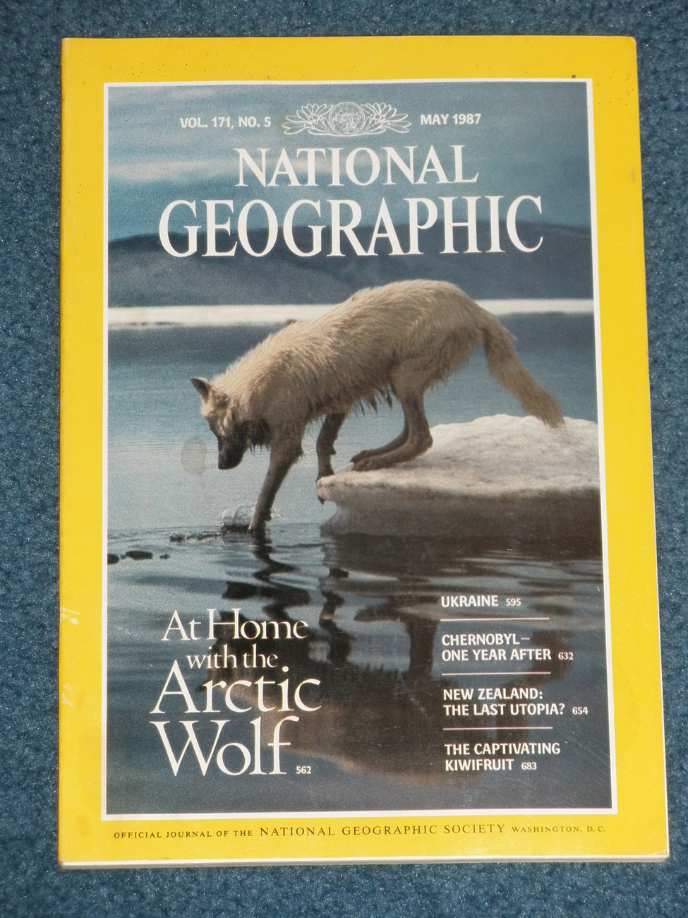 National Geographic stories take you on a journey thats always enlightening often surprising and unfailingly fascinating