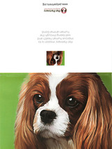 American Greetings Pet Partners Dog Greeting Card With Envelope - $13.54