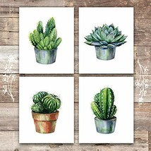 Cactus Decor Art Prints Set of 4 - Unframed - 8x10s | Botanical Prints