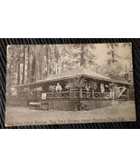 Vintage advertising photo postcard Big Tree Club House Grove Santa Cruz CA - $6.50