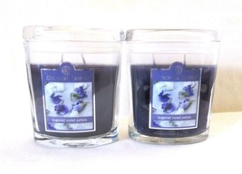 2 Colonial Candle~SUGARED VIOLET PETALS~ 8 oz Oval Jar Candles, 2 wicks - £24.74 GBP