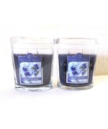 2 Colonial Candle~SUGARED VIOLET PETALS~ 8 oz Oval Jar Candles, 2 wicks - $32.00