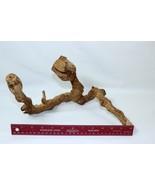 "Large 12"" Natural Driftwood Tree Root Stump Decor Terrarium Reptiles Aqu... - $24.74"