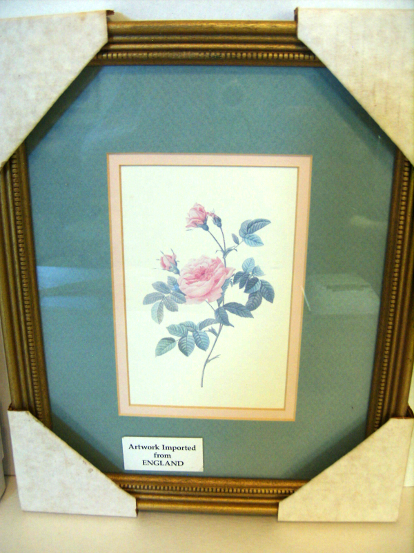 New Pair of Framed Rose Prints, Pierre-Joseph Redoute', England