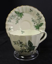 Royal Worcester Flat Cup and Saucer - Valencia Pattern - $1.60