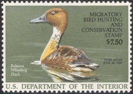 RW53, Fulvous Whistling Federal Duck Stamp VF OG NH - Stuart Katz - $9.00