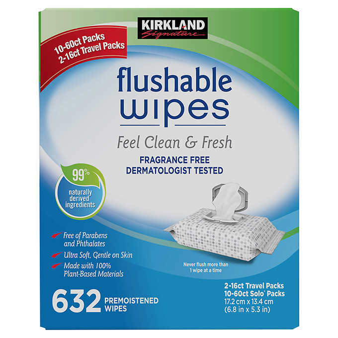 Primary image for 632 Kirkland Signature Moist Flushable Wipes Fragrance Free Dermatologist Tested
