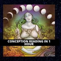 UNLIMITED QUESTIONS Conception Predictions Same Day Psychic Reading - $27.23+
