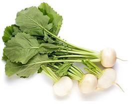 Sow No GMO Turnip Shogoin White Globe Shape Non GMO Japanese Heirloom Greens/Roo - $1.95