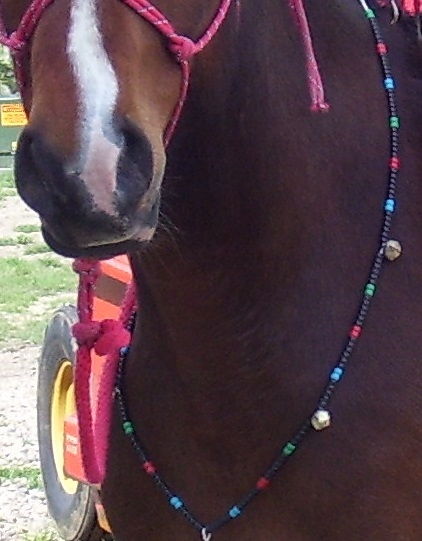 BLACKJACK ~ HORSE RHYTHM BEADS ~ Black with MultiColors ~ Size 54 Inches