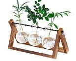 Plant Terrarium Wooden Stand, Desktop Glass Planter Bulb Vase with (3 Bottle)