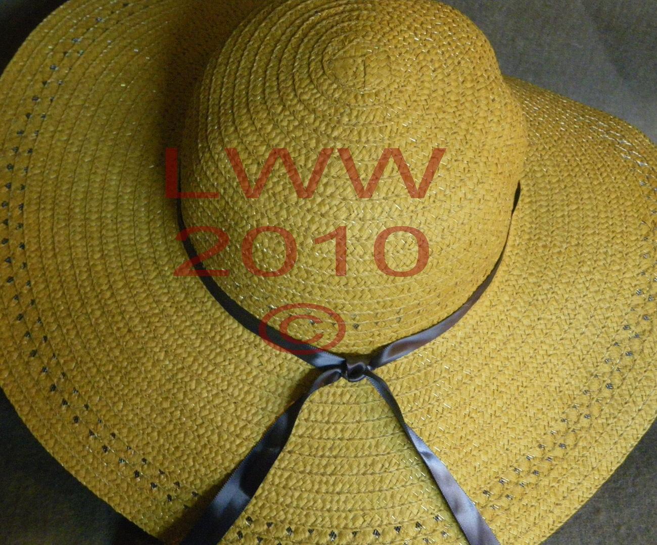 Ladies Floppy Straw Sun Hat with blue ribbon autumn daisies