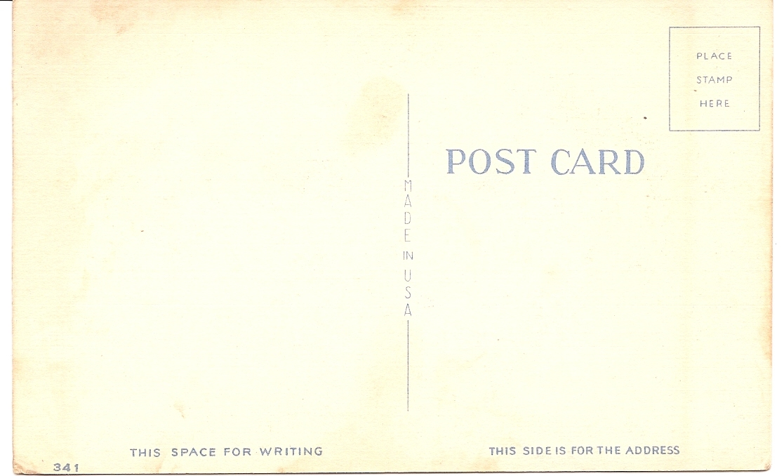"""MC Risque Humor Linen Post Card """"Having A Swell Time""""! Unused & Uncirculated!"""